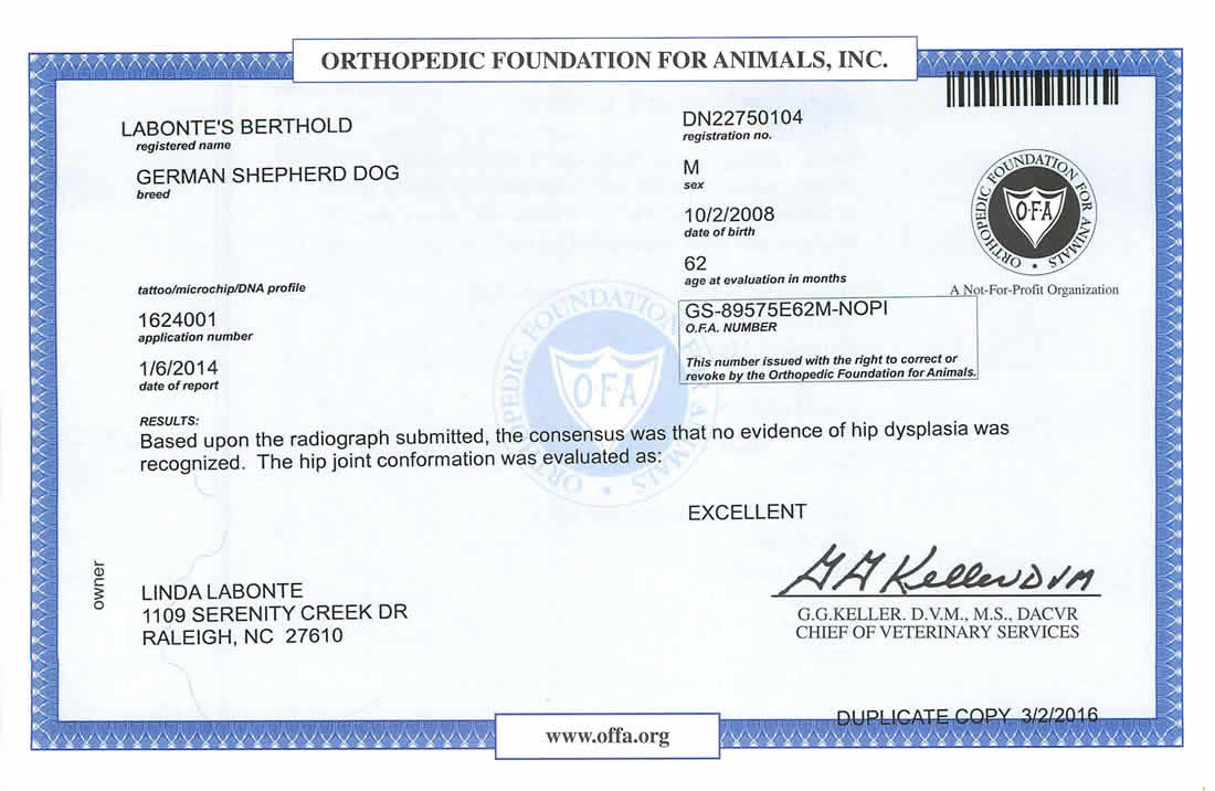Dog Training - Labonte Canine Services